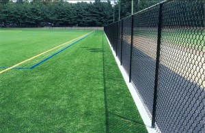 Athletic Fields and Sport Fences 9