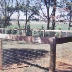Round Pressure Treated Posts with Wire Mesh and Top Board Fence