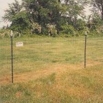 T Posts and Wire Mesh Fence